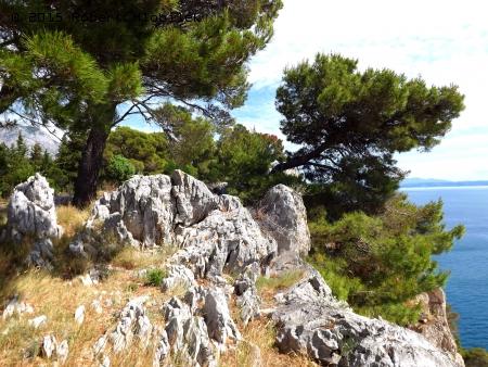 Chorvatsko - Park Šuma Osejava