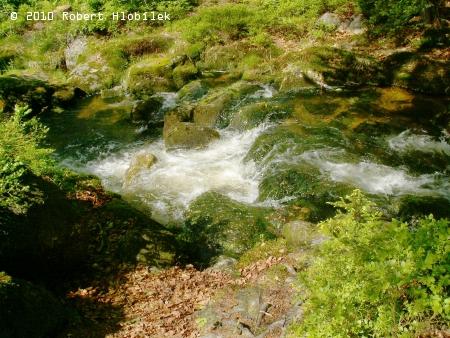 Říčka Kamenice při cestě k přehradě Josefův Důl