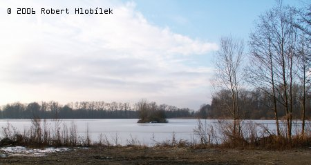 Zamrzlý rybník