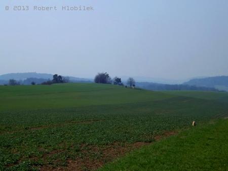 Pohled ze Salaše na Panský kopec