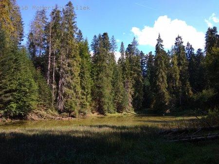 Jezero v lesích nad Osturňou