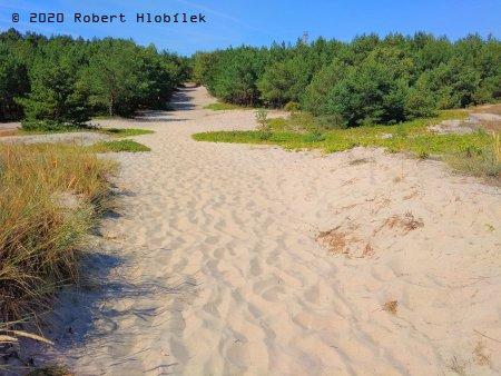 Hel - písečné duny a borovicové lesy kolem pláží