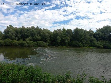 Řeka Váh kousek za soutokem s Vlárou