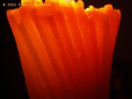 Tělo svíčky