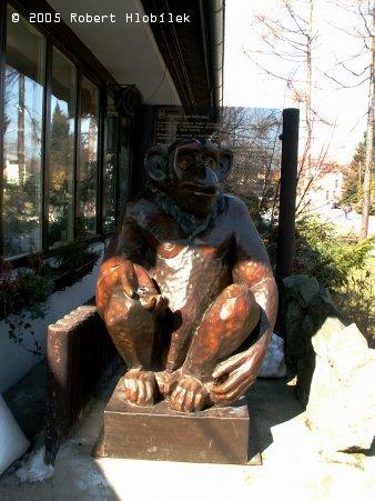 Dřevěná opička