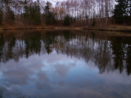 Rybník Albrechtičky II