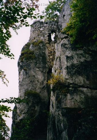 Zřícenina hradu Sulov